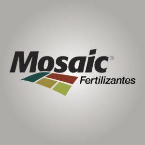 mosaic-150x150